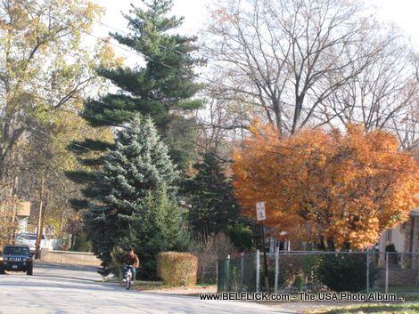 Buena Vistga Ave Spring Valley NY