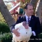 Thanksgiving 2010 Presidential